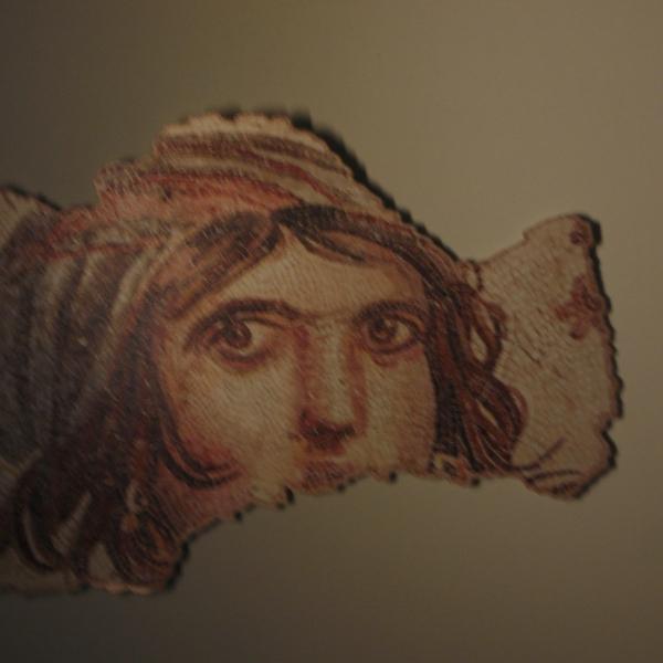 ΜΕΣΟΠΟΤΑΜΙΑ ΦΘΙΝ 2011