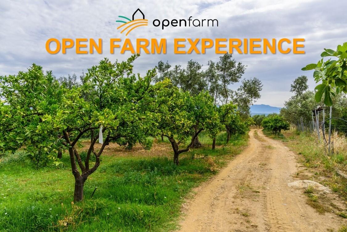 OPEN FARM EXPERIENCE: ΓΝΩΡΙΜΙΑ ΜΕ ΤΟΥΣ ΠΑΡΑΓΩΓΟΥΣ